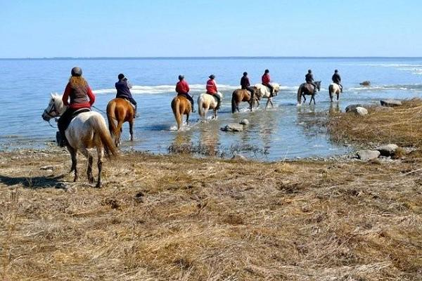 Zirgu tūrisma sēta Tihuse