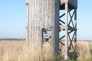 Nature and birdwatching tower in Loode oak forest