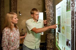 Sagadin metsämuseo
