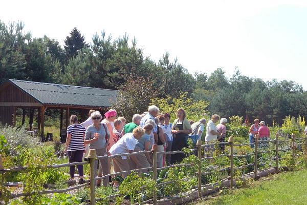 Herb garden on Tamme Farm