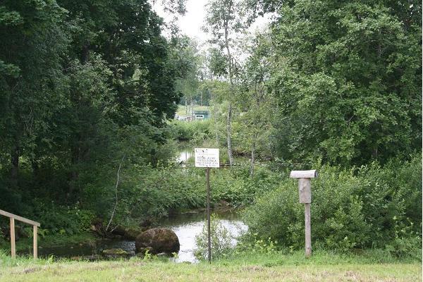 Pärnu jõe algus Roosna-Allikul