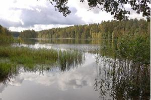 Viitna nature studies trail