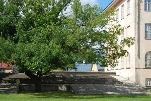 Byggnaden av Läänemaa Ühisgümnaasium (Läänemaatraktens gemensamma gymnasieskola)