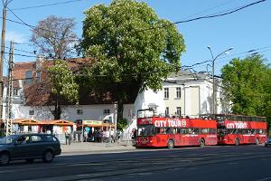 Автобус и музеи Tallinn City Tour