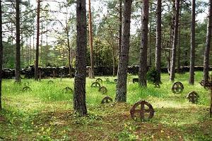 Кладбище Вормси