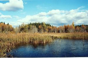 Äntu Punamägi ja telkimisplats
