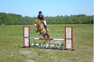 Ridala stables