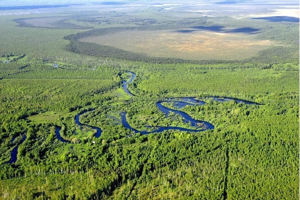 Peipsivēres dabas lieguma zona