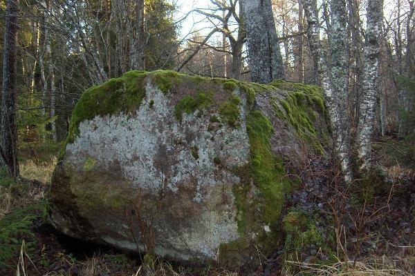 Retki haltioiden radoilla Tõldmäen muinaisluonnossa