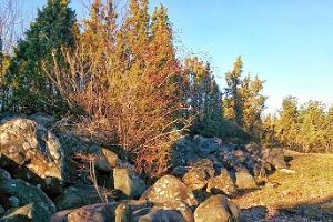 Omatoiminen Käina-Kassari -pyöräretki