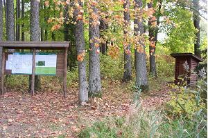 Wanderpfad im Lärchenhain Loodi