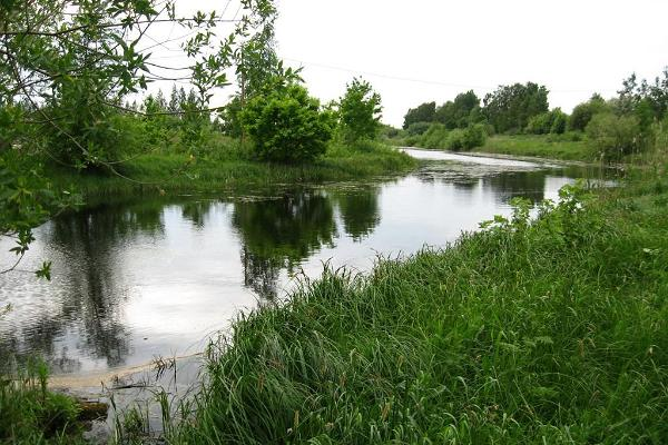 Räpinan polderin suojelualue