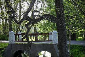 """Die """"Trommeln"""" oder die Brücken von Kärdla"""