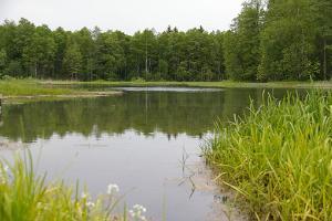 Prandi avoti un avotu ezers