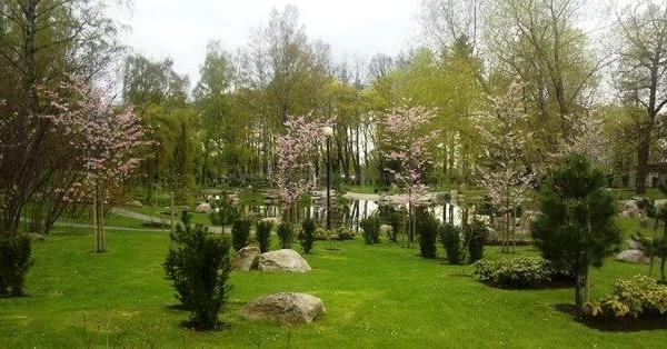 Japanese garden in Kardiorg park