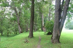 Luunja mõisapark