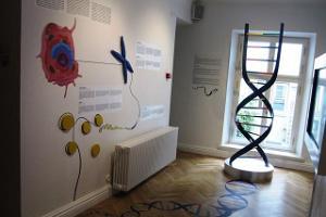 Estonian Health Care Museum