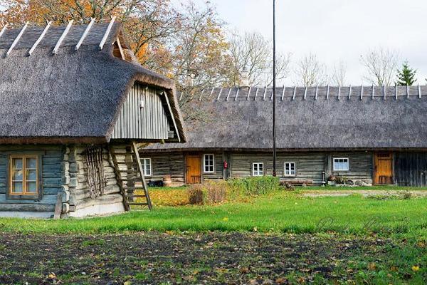 Tooma Tourist Farm