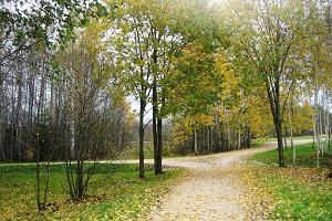 Wanderpfad im Gesundheitspark Vesiroosi in Rapla