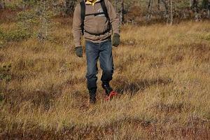 Поход в болотоступах по национальному парку Лахемаа