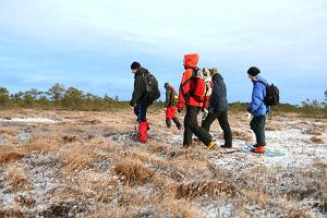 Moorschuhwanderung im Nationalpark Lahemaa