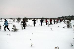 Kanuu.ee ziemas safari un slēpošanas pārgājiens Kakerdaja purvā