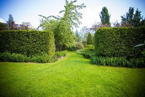 Smaragd Arboretum