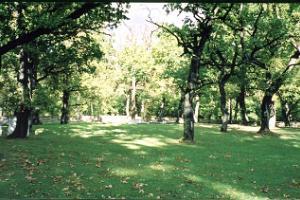 Der deutsche Soldatenfriedhof