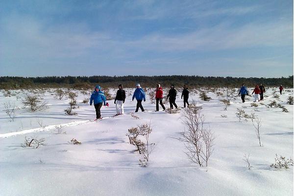 Seikle Vabaks Schneeschuh-wanderung auf die Moorinsel Toonoja im Nationalpark Soomaa