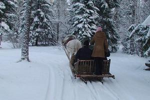 Erlebnisreiche Pferdeschlittenfahrt im märchenhaften Wald der Burg Varbola