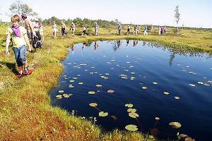 Богатый на впечатления день в национальном парке Соомаа
