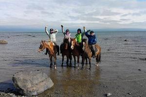 Matkad hobusega haldjariiki - kas reega, tõllas või ratsa.