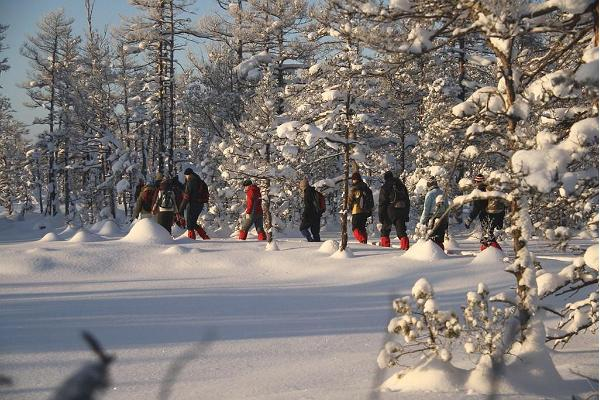 Lumikenkäretki Kõrvemaalla