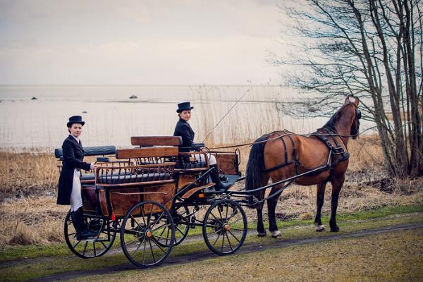 Pferdestall von Teeääre