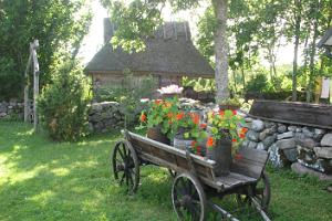 Ferienhäuser von Vikingi