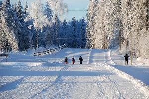 Tamsalu Sports Complex Ski Trails