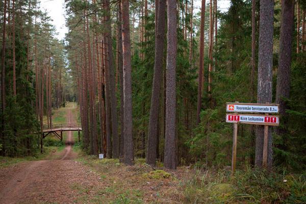 Health trails at Vooremäe Health Centre, rapid descent