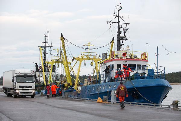 Порт Дирхами