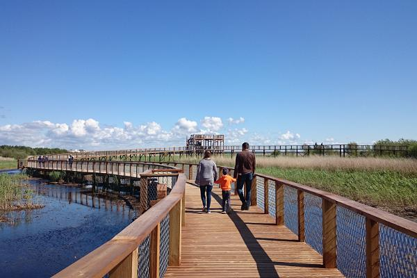 Wanderpfad auf der Strandwiese in Pärnu