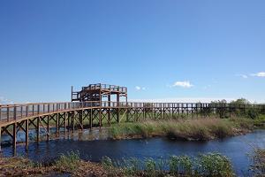 Pärnun rantaniityn luontopolku