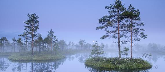 Loodusmatkad-Põhja-ja-Lõuna-Eestis