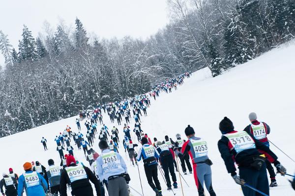 Tartu Marathon 63 km / 31 km