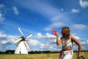 Seidla Windmill