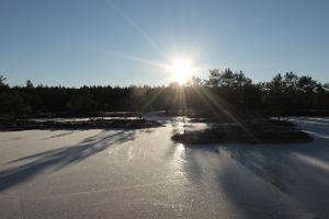 Skating trips in Kõrvemaa