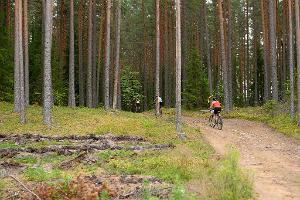 Туристическая тропа Вызу-Ныммевески