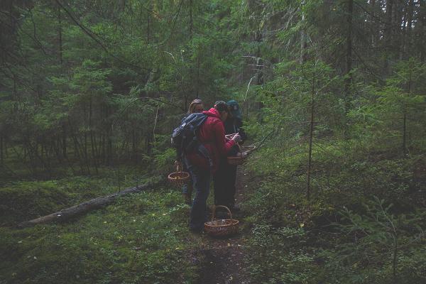 Tädu nature study trail