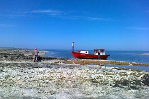Veneellä Vilsandiin