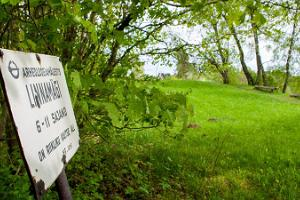 Burgberg und vorgeschichtliche Siedlung in Rõuge
