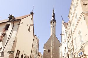 Pastaiga pa Tallinas vecpilsētu gida pavadībā