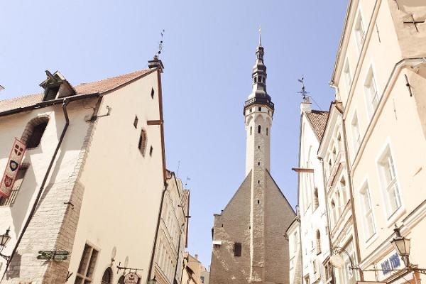 Guided walk in Tallinn's Old Town